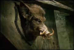 פונדק ראש החזיר