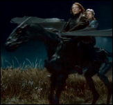 ביל וויזלי לאחר קרב שבעת הפוטרים, מגיע למחילה יחד עם פלר דלאקור