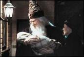 אלבוס דמבלדור ומינרווה מקגונגל אוחזים בהארי פוטר הצעיר