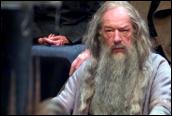 אלבוס דמבלדור הצעיר במשפט